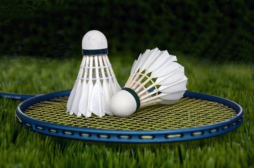 Badminton Hotel Step
